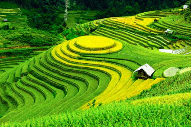 Eco Wakacje – Tajlandia Północ-Południe