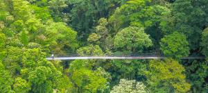 Kostaryka 13 dni 2021 bez hoteli ostateczny na fb-image39