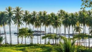 Kostaryka 13 dni 2021 bez hoteli ostateczny na fb-image67